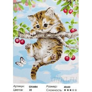Котенок на вишне Раскраска картина по номерам на холсте
