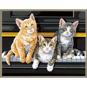 Котята на пианино Раскраска (картина) по номерам Dimensions
