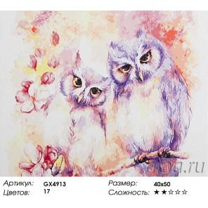 Количество красок и сложность Две совушки Раскраска картина по номерам акриловыми красками на холсте