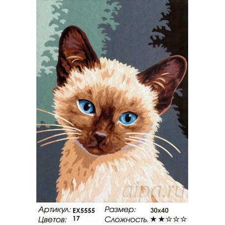 Котенок Гав Раскраска картина по номерам акриловыми ...