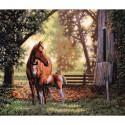 Лошадь с жеребёнком 35260 Набор для вышивания Dimensions