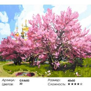 Количество цветов и сложность Весенний мотив Раскраска картина по номерам акриловыми красками на холсте