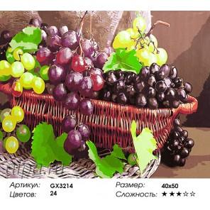 Гроздья винограда Раскраска картина по номерам акриловыми красками на холсте