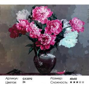 Количество цветов и сложность Пионы в глиняной вазе Раскраска картина по номерам акриловыми красками на холсте