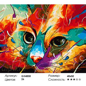 Разноцветный взгляд Раскраска картина по номерам на холсте
