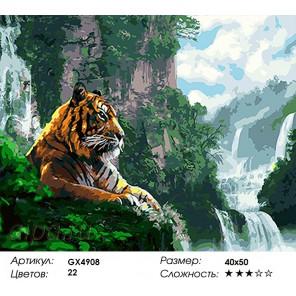 Тигр у водопада Раскраска картина по номерам на холсте