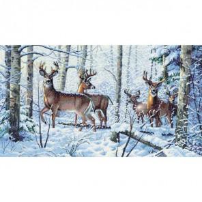 Зима в лесу 35130 Набор для вышивания Dimensions ( Дименшенс )