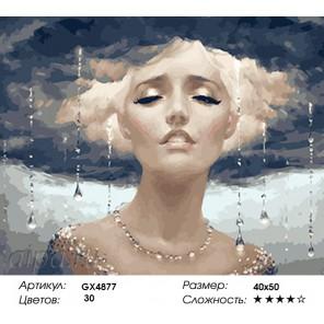 Гром и Дождь Раскраска картина по номерам на холсте