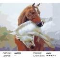 Лошадиная любовь Раскраска картина по номерам на холсте