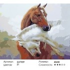 Количество и сложность Лошадиная любовь Раскраска картина по номерам акриловыми красками на холсте