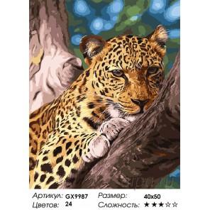 Количество цветов и сложность Мечтающий леопард Раскраска картина по номерам акриловыми красками на холсте