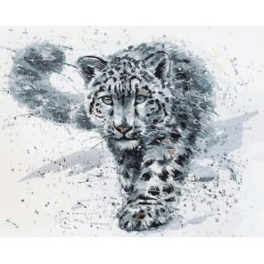 Снежный барс Раскраска картина по номерам акриловыми красками на холсте Menglei