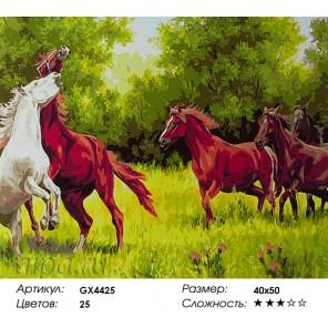 Ретивые кони Раскраска картина по номерам акриловыми красками на холсте
