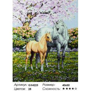 Весенние лошади Раскраска картина по номерам акриловыми красками на холсте