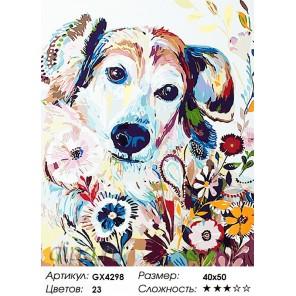 Количество цветов и сложность Цветная собака Раскраска картина по номерам акриловыми красками на холсте