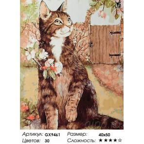 Количество цветов и сложность Кот в саду Раскраска картина по номерам акриловыми красками на холсте