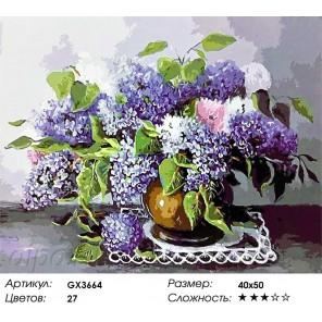 Количество цветов и сложность Веточки сирени в глиняной вазе Раскраска картина по номерам акриловыми красками на холсте