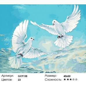 Голуби в небе Раскраска картина по номерам акриловыми красками на холсте