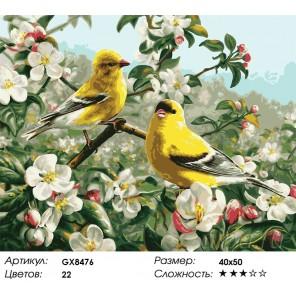 Количество цветов и сложность Желтые птички Раскраска картина по номерам акриловыми красками на холсте