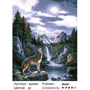 Количество цветов и сложность Полночный вой Раскраска картина по номерам акриловыми красками на холсте