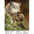 Количество цветов и сложность Волчица с малышом Раскраска картина по номерам акриловыми красками на холсте