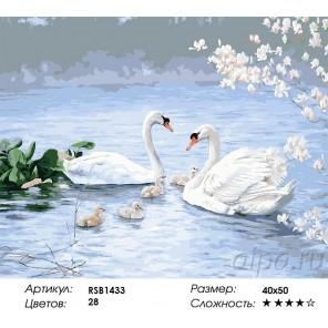 Лебединая семья Раскраска картина по номерам на холсте