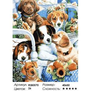 Милые щенята Раскраска картина по номерам на холсте
