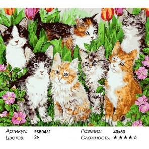 Семь котят Раскраска картина по номерам на холсте