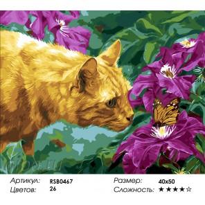 Количество цветов и сложность Знакомство с бабочкой Раскраска картина по номерам акриловыми красками на холсте