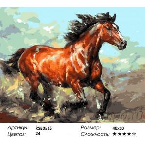 домашние животные раскраски по номерам и другие товары для