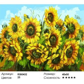 Количество цветов и сложность Кубанские подсолнухи Раскраска картина по номерам акриловыми красками на холсте