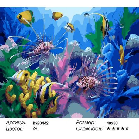 подводный мир раскраска картина по номерам на холсте Rsb0442