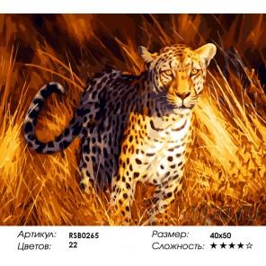 Хищный леопард Раскраска картина по номерам на холсте
