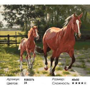 Лошадь и Жеребенок Раскраска картина по номерам на холсте