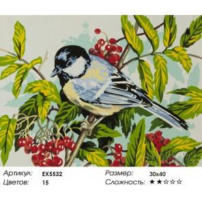 Количество цветов и сложность Синичка на боярышнике Раскраска картина по номерам акриловыми красками на холсте
