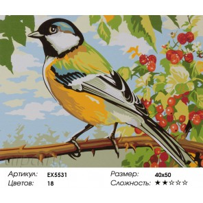 Количество цветов и сложность Синичка в саду Раскраска картина по номерам акриловыми красками на холсте