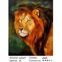 Его Величество Лев Раскраска картина по номерам на холсте