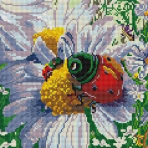 Летняя жизнь Алмазная вышивка мозаика на подрамнике Белоснежка