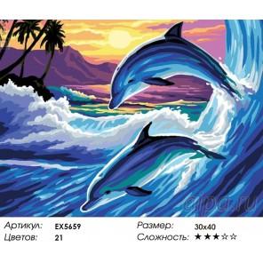 Количество цветов и сложность Пара дельфинов Раскраска картина по номерам акриловыми красками на холсте