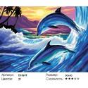 Пара дельфинов Раскраска картина по номерам на холсте