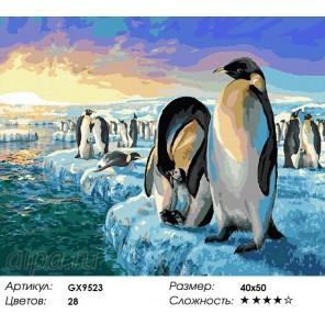 Семья пингивинов Раскраска картина по номерам акриловыми красками на холсте