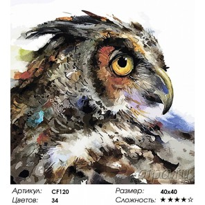 Количество цветов и сложность Проницательная сова Раскраска по номерам акриловыми красками на холсте Color Kit