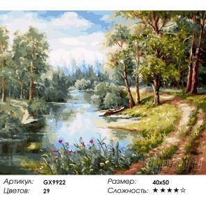 Количество и сложность Тропинка вдоль реки Раскраска картина по номерам акриловыми красками на холсте