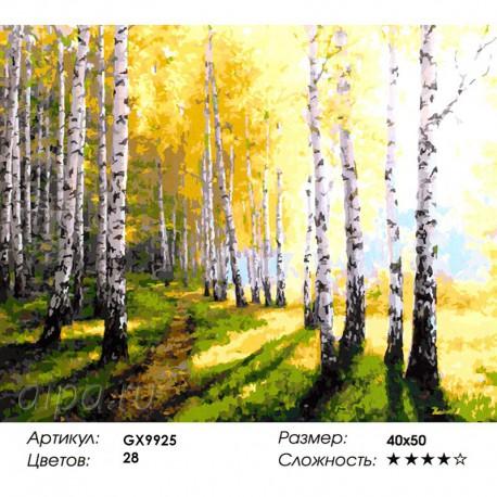 Количество цветов и сложность Березовая роща на рассвете Раскраска картина по номерам акриловыми красками на холсте