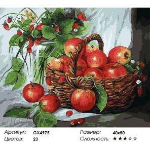 Яблоки и земляника Раскраска картина по номерам на холсте
