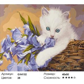 Количество цветов и сложность Нежный котенок Раскраска картина по номерам акриловыми красками на холсте