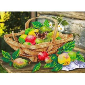 Яблочки Набор для частичной вышивки бисером Паутинка