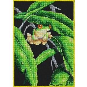 Древесная лягушка Набор для частичной вышивки бисером Паутинка