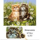 Крупно Летние котята Алмазная вышивка мозаика Гранни