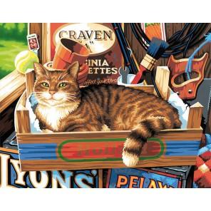Кошачьи привычки Раскраска картина по номерам Dimensions